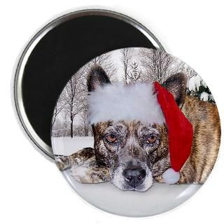 Christmas Brindle Mountain Cur  Irony Design Fun Shop   Humorous