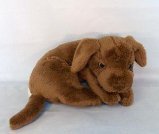 Tangerine Press Chocolate Lab Puppy Plush Labrador Dog Stuffed Animal