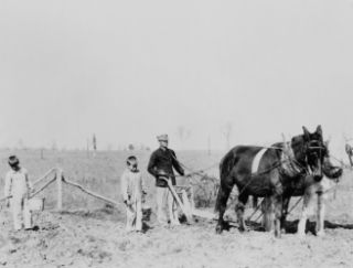 Farmer and two boys plowing with two horses or mules in Lonoke Cou d4
