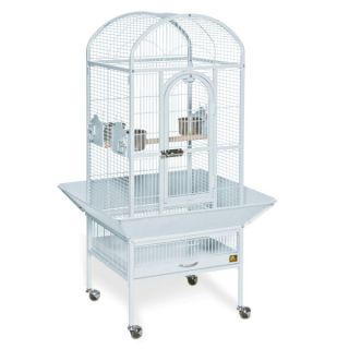 Prevue Pet Products Small Dometop Bird Cage   Bird   Boutique